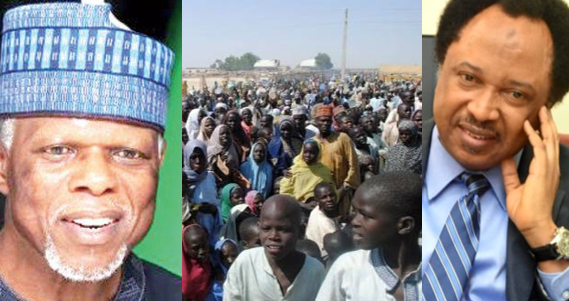 foreign rice consumption: Nigerian IDPs in danger Shehu Sani revealsforeign rice consumption: Nigerian IDPs in danger Shehu Sani reveals | e-nigeria! - www.e-nigeriang.com