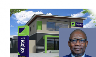 Mustafa Chike-Obi: Profile of New Fidelity Bank Chairman | e-nigeria!